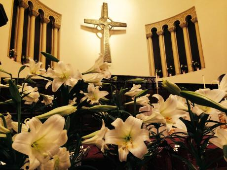 Easter Lillies at Westminster